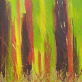 Forest by Jolene Courtemanche