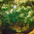 Forest Landscape by Gillis van Coninxloo