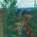 Forest Landscape by MotionAge Designs