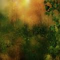 Forest Moods by Carol Cavalaris
