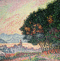 Forest Near St Tropez by Paul Signac