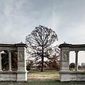 Forest Park Columns by Steven Jones