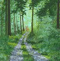 Forest Path 2 by Stephen Riffe