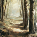 Forest Path by Steve Henderson