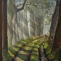 Forest Pathway by Cheryl Wallace