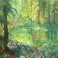 Forest Pond by Sherry Shipley