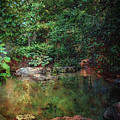 Forest Pool Digital Painting 2676 Dp_2 by Steven Ward