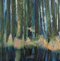 Forest Reflections by Richard Beauregard