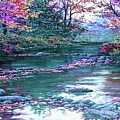 Forest River Scene. L A by Gert J Rheeders