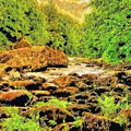 Forest Stream by Modified Image