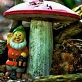 Forest Toy by Dawn Van Doorn