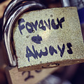 Forever And Always Paris Love Lock by Nicole Freedman