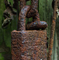 Forever Locked by Robert Osborne