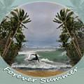 Forever Summer 2 by Linda Lees