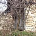 Forgotten Door by Radoslav Radoslavov