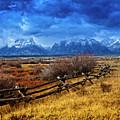 Forgotten Fence by Richard Cronberg