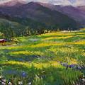 Forgotten Field by David Patterson