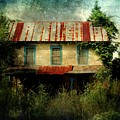 Forgotten Homestead by Mattie Bryant