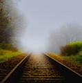 Forgotten Railway Track by Svetlana Sewell