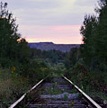 Forgotten Train Track by Elaine Berger