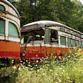 Forgotten Trains by Marzena Grabczynska Lorenc