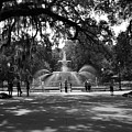 Forsyth Park Black And White by Lisa Wooten
