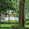 Forsyth Park Inn In Savannah  3205 by Jack Schultz