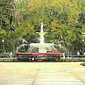 Forsyth Park Savannah by Gregory Ponds