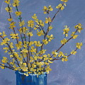 Forsythia by Pete Maier