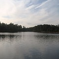 Fort Dix Lake In The Woods by Jennifer  Sweet
