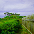 Fort Fisher Terrain by David Anderson