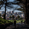 Fort Mason Frame by Andrew Hollen