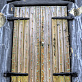 Fort Moultrie Bunker Door by Dustin K Ryan