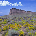 Fort Rock by Buddy Mays