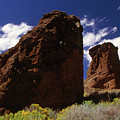 Fort Rock Twin Towers- H by Rick Bures