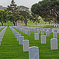 Fort Rosencrans National Cemetery by Susan McMenamin