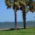 Fort Sumter Charleston Sc by Susanne Van Hulst