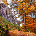 Fortification Koenigstein In Autumn Time by Jenny Rainbow