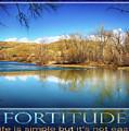 Fortitude Boise Motivational Artwork By Omashte by Omashte Witkowski