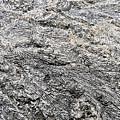 Fossil Rock Abstract 10 by Bob Slitzan