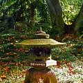 Foster Botanic Garden 5 by Ron Kandt