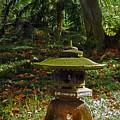 Foster Botanic Garden 6 by Ron Kandt