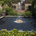 Fountain And Peppers by Sally Weigand