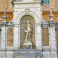 Fountain In The Vatican City  by Richard Rosenshein
