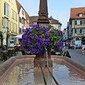 Fountain In Wertheim, Germany by Barbie Corbett-Newmin
