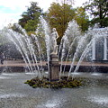Fountain On The Grounds Of The Peterhof Grand Palace by Richard Rosenshein