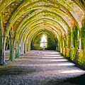 Fountains Abbey, Vaulted Chamber by Brian Shaw