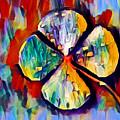 Four Leaf Clover by Chris Butler