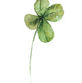 Four Leaf Clover Watercolor Poster by Joanna Szmerdt