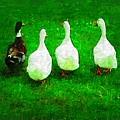 Four Little Ducks Went Out To Play by Deborah Selib-Haig DMacq